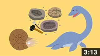 小平町の化石