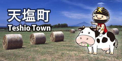 天塩町 2016-2017
