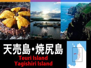 天売島・焼尻島